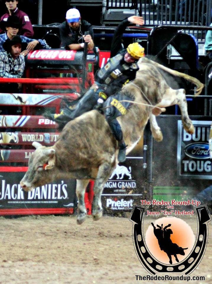 Image result for jess lockwood rodeo round up