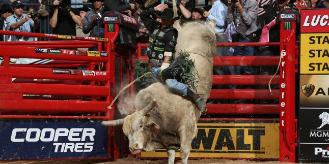 The Pbr Returns To Kansas City For The 2018 Caterpillar