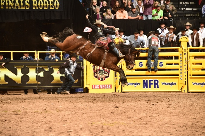 2016 NFR Archives - The Rodeo Round Up